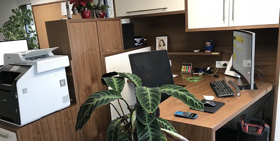 Büro-Amerikanische Nuss-Arbeitsplatz 1
