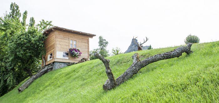 Gartenhaus mit Baumstamm